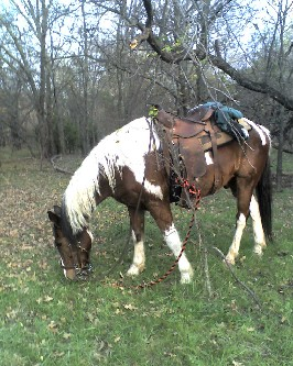 Cherokee on the Trails - No, I didnt bag anything afterward